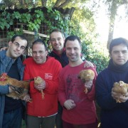 Amics Gallina Pairal