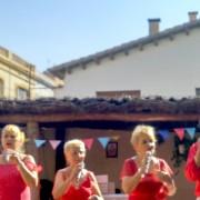 concert_l'alegria dels avis_santa maria 4