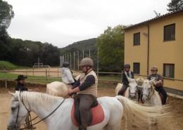 Teràpia de cavalls 03